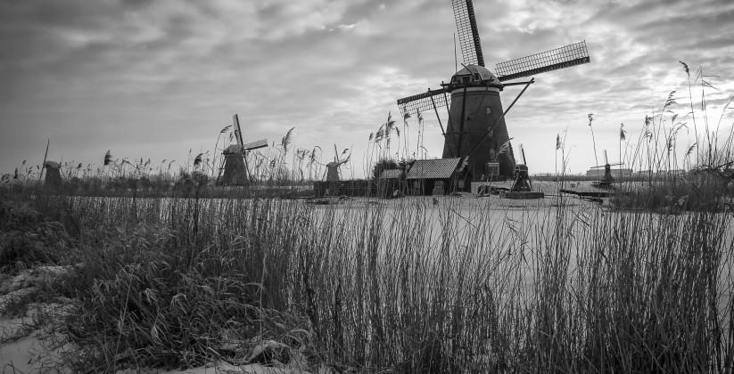 ©Roel Dijkstra / Foto: Fred LibochantKinderdijk / sneeuw / landschap